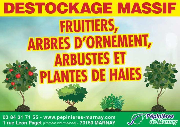 Plantations : il est encore temps ! Grand destockage aux Pépinières de Marnay